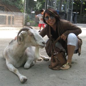 Maritza Oliver animals